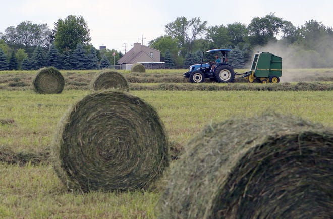 Wisconsin farms spent less on production costs in 2018 as producers continue to deal with consolidation and tough economic conditions.
