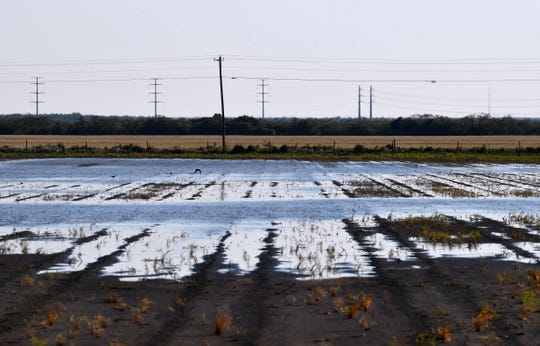 A wide pool of water reflects the sky in a Jones County field Tuesday. Wet spring weather has delayed planting for many area farmers who are now facing a late-June crop insurance deadline for getting cotton seed in the ground.