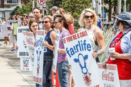 Animal rights and pro-vegan activists protest animal cruelty, the dairy industry and Fair Oaks Farms along West Street during a press conference held by ARM Investigations in Indianapolis on Wednesday, June 12, 2019.