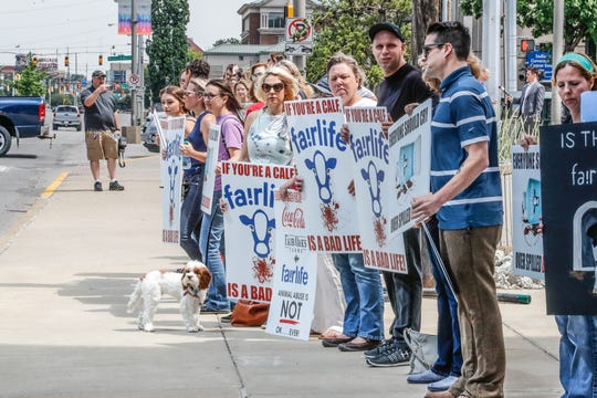 Animal rights and pro-vegan activists protest animal cruelty, the dairy industry, and Fair Oaks Farms, along West St., during a press conference held by Arm Investigations, (The Animal Recovery Mission), at the JW Marriott in Indianapolis on Wednesday, June 12, 2019. Arm has released video of alleged animal cruelty at Fair Oaks Farms.