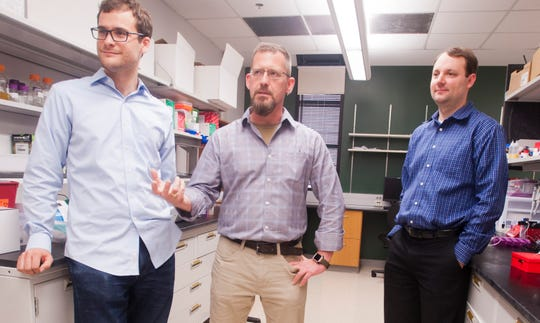 University of Louisville doctoral student Brett Janis (left) is working with professors Michael Menze and Jonathan Kopecheck on dried-blood research that could help blood donations last months or years longer.