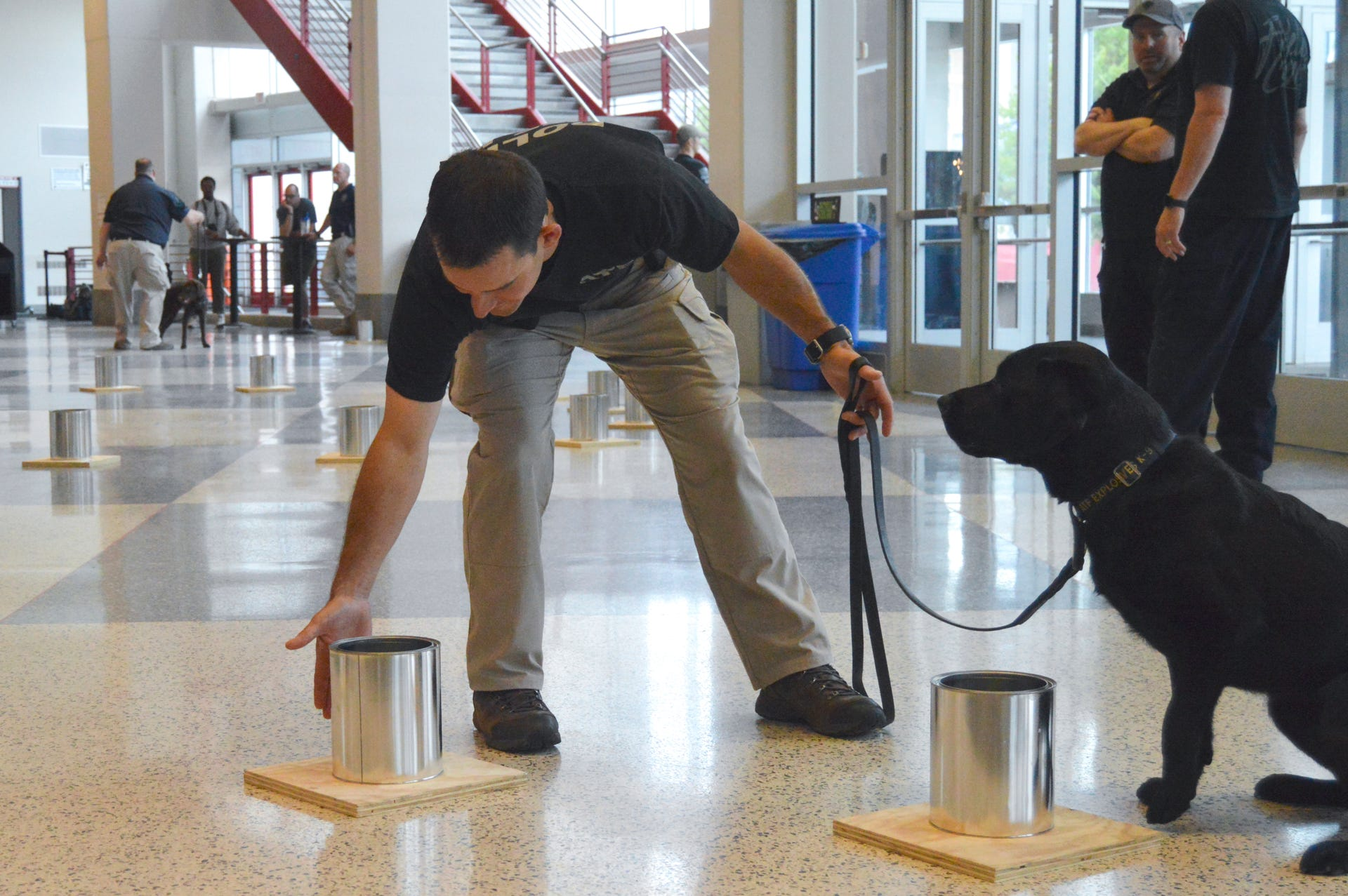 Nic Garlie from the ATF's St. Paul office starts Taylor, a 3-year-old black Labrador, on the training course for the National Odor Recognition Test at the Kohl Center. Taylor sniffed inside each canister and when she detected an explosive she would sit and signal to Garlie.