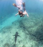Molly Duda gets up close and personal with a shark off the coast of North Carolina.