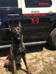 A Florida Highway Patrol K-9 named Remy apprehended a hit-and-run suspect who is accused of fleeing from Santa Rosa County to Okaloosa County.