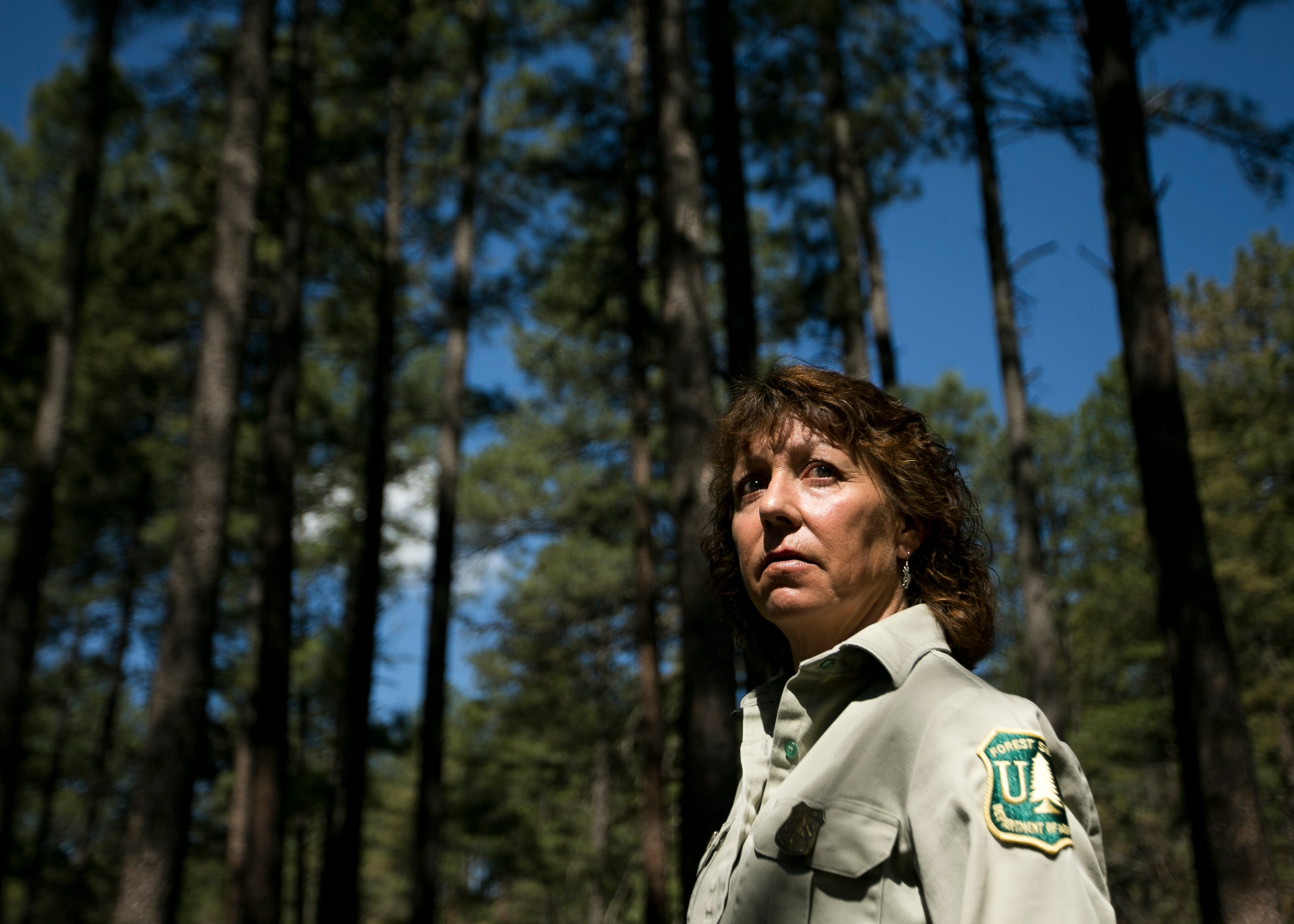Jodie Canfield, a ranger with the U.S. Forest Service Smokey Bear District, stands in a grove of thinned trees in Ruidoso, New Mexico, on May 31, 2019.