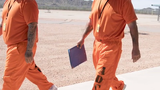 Vetoing a modest sentencing reform could lead to a ballot initiative that the Arizona governor would like even less, columnist Robert Robb says.