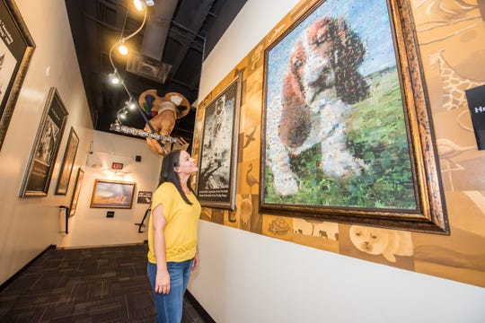 A publicity photo shows a woman looking at a WonderWorks exhibit. WonderWorks is a science-oriented entertainment attraction. It intends to open a location in Branson in fall 2019.