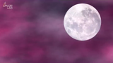 Look up to the night sky this month to catch a glimpse of this special full moon.