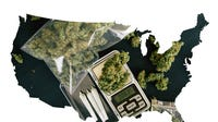 More states have waved the green flag on weed from a medical and/or adult-use, with 33 medical marijuana-legal states. Ten allow adult consumption.