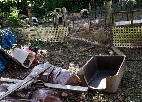 The yard at a home on Arlington Avenue in Anderson, where 65 animals were rescued from a house fire.