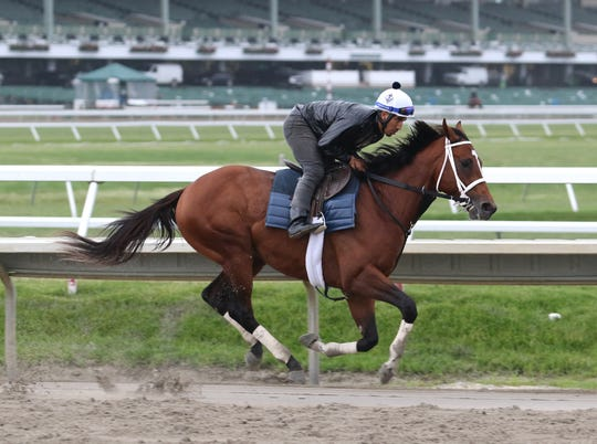 Maximum Security gallops at Monmouth Park on Thursday morning June 13, 2019 with exercise rider Edelberto Rivas.  Maximum Security will make his next start in Sunday's $150,000 tvg.com Pegasus Stakes at  the Shore Oval in Oceanport, NJ.