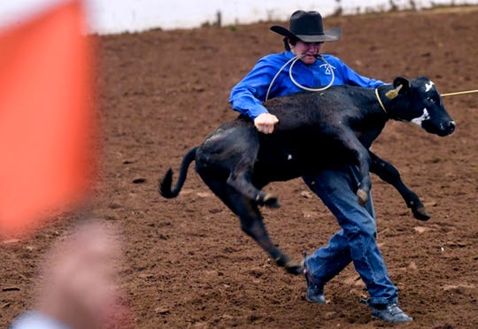 A calf-roping judge lifts his flag as Alvin's Nick Achille flips a calf on its side so he can tie its legs together Thursday in the Taylor County Coliseum during the Texas High School Rodeo Association State Finals.