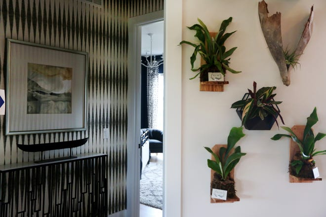 Living plants can really liven up your home.