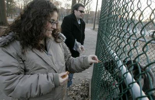 Angelina Serrano and Michael Strauss feed the goats at the Animal Haven in Johnson Park, Piscataway on Monday, January 28, 2008
