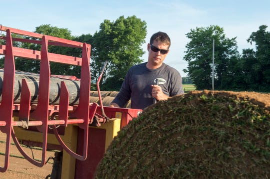Farm manager Aaron Neufelder operates a Magnum 420SR harvester pulling Northbridge sod from the fields at GrassMasters Sod Farm in Patoka, Ind. Tuesday, June 11, 2019. The sod will be used at the Cincinnati Bengals practice field.