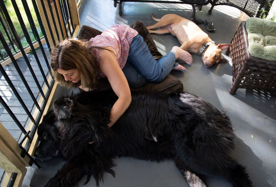 Fran Alexay Rizzo gives Nico a belly rub while sitting with her dogs Nico and Luca Thursday, June 13, 2019. Rizzo is looking for the person who stopped and helped her and her dogs when she was walking them.