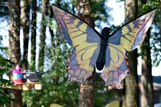 Roper Mountain Science Center's Butterfly Adventure is another way to enjoy the advent of summer.