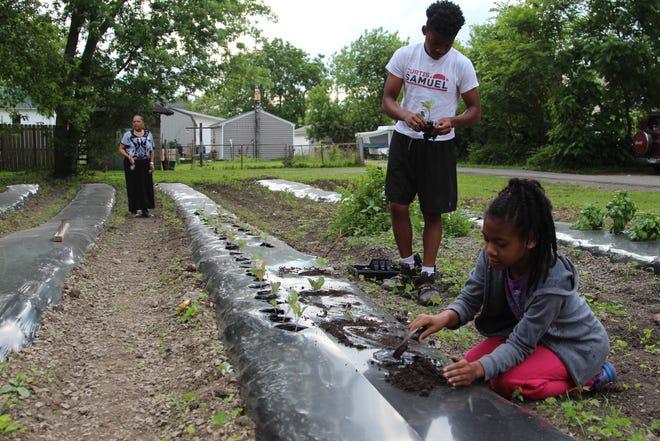 Caden Jones, 14, helps his sister Carmen Parker, 10, as she plants in a community garden off of Waterloo Street Wednesday evening.