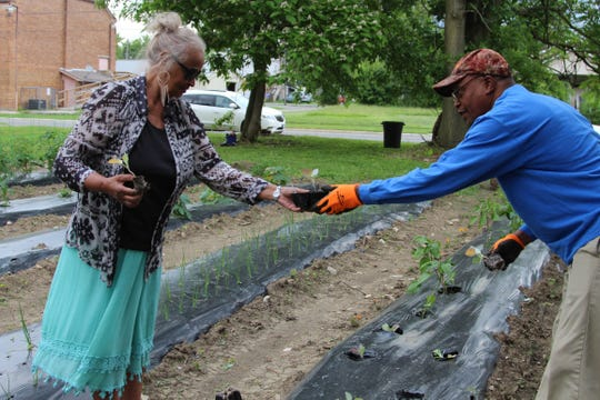 Wanda Walker, a member of Mayes Community Temple Church, stopped by a garden across the street from her church Wednesday evening to help plant sweet potatoes and collard greens.