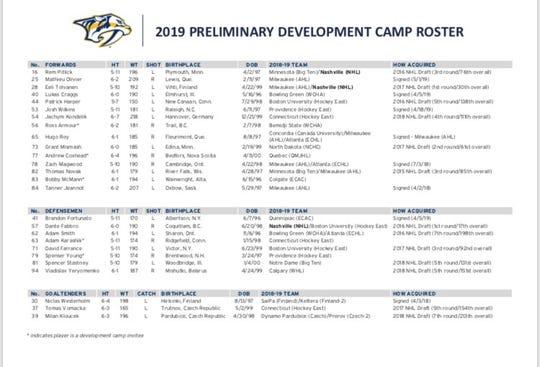 2019 Predators roster for development cap