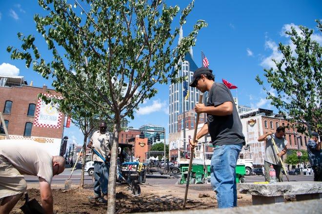 Metro Parks and Recreation employees plant Yoshino cherry trees at Riverfront Park Thursday, June 13, 2019, in Nashville, Tenn.