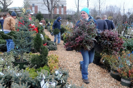 In this file photo, customers shop at an annual spring and evergreen tree sale at Eisele's Nursery in Paramus.
