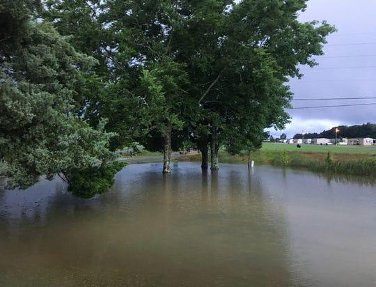 Flooded field off La. 31 near Prairie  Laurent following last Thursdays' rains.