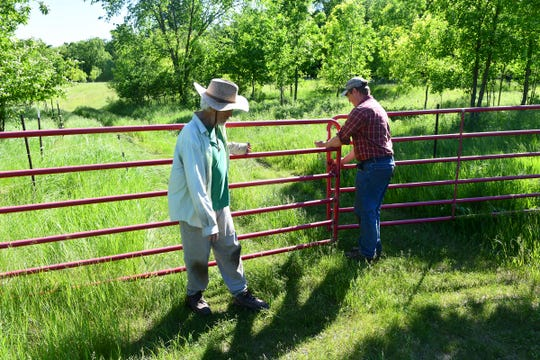 Colin and Tim King close a gate Wednesday, June 12, at their farm near Long Prairie.