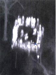 In evidence present by the U.S Attorney's office, a surveillance photo of  a March dog fight