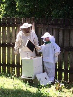Jane Essig and Adam Strickland working Adam's bees.
