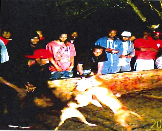 In evidence present by the U.S Attorney's office, a photo from law enforcement at a February dog fight