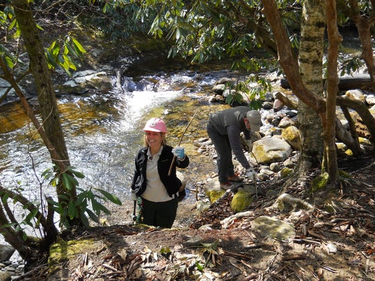 Lorie Stroup, fisheries biologist with the U.S. Forest Service, works on riparian and habitat improvement projects for WNC's native brook trout in the Pisgah National Forest.