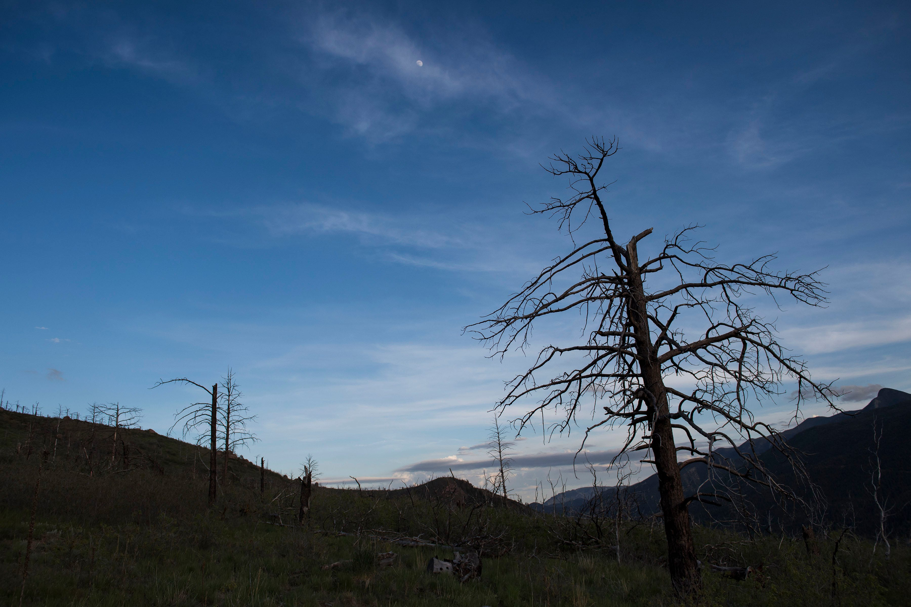 The burn-scarred hillside from the 2012 Waldo Canyon Fire. Had the fire turned a different way, Cascade-Chipita Park might not have survived.