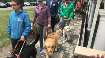 The Seeing Eye, in its 90th anniversary year, held a dedication  for a new $7.6 million kennel facility at its HQ in Morris Township, June 13, 2019.