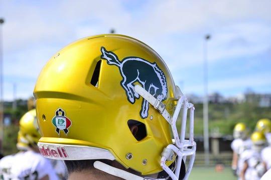 "The helmet and logo of the Universidad Autónoma del Estado de México ""American football"" team, the Potros Salvajes, or Wild Colts."
