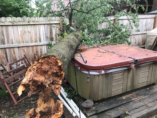 Strong winds knocked over a tree in the backyard of a home on E. 5th in New Castle during a storm on June 13.