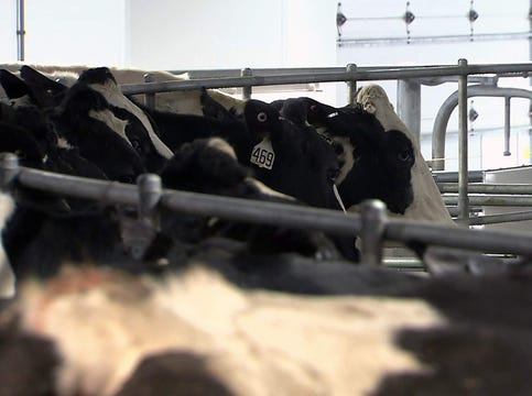 CAFO oversight in Wisconsin and who pays for it?