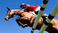 CSIO Show horse jumping in St. Gallen, Switzerland