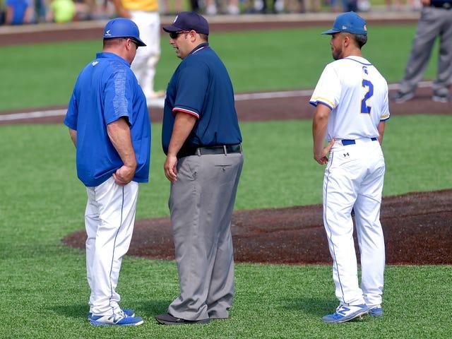 New York Class A baseball: M-E shy of state title