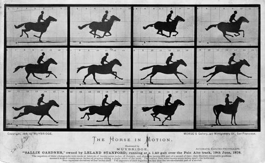 """The Horse in Motion"" by Eadweard Muybridge found out that there was a moment mid-stride where horses had all hooves off the ground."