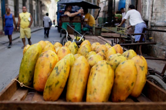 In this Wednesday, April 22, 2009 file photo, papayas sit on a cart at a public market in Old Havana, Cuba.
