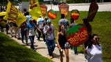 Protesters called for a boycott of Wendy's restaurants over their refusal to join the Fair Food Program created by the Coalition of Immokalee Workers on June 15, 2019. FFP aims to improve conditions for farmworkers, increase their pay by asking buyers to pay 1 to 4 cents more per pound of tomatoes.