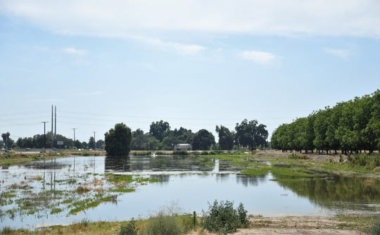 The California Department of Parks and Recreation is considering giving Visalia a $2.4 million grant for the East Side Regional Park, located at Mineral King Avenue and Road 156.