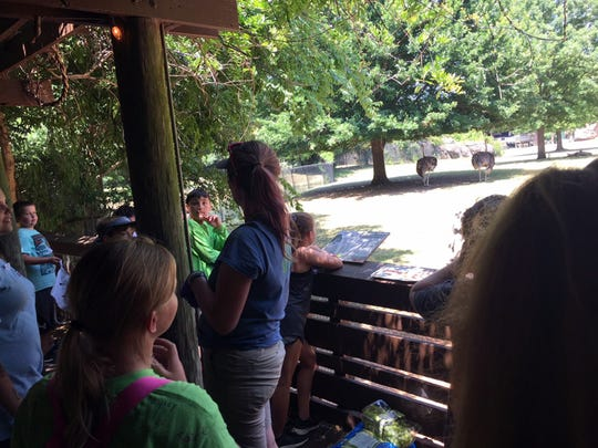 Zookeepers and other staff members will visit with kids during summer camps at the Montgomery Zoo.