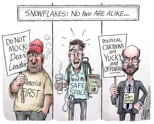 3 types of Snowflakes: June 13, 2019
