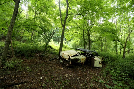 One of several long abandoned cars in Graham Hills Park in Pleasantville, photographed June 16, 2019. Hikers and trail bikers reports seeing about six cars in the woods throughout the park.