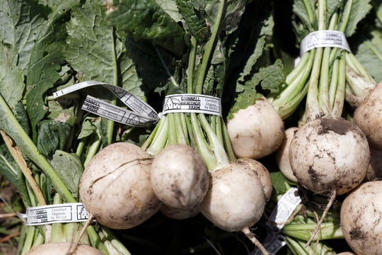 In this Monday, June 10, 2019 photo, Hakurei turnips sit in a field after being harvested on Andrew Dunham's 80-acre organic farm, in Grinnell, Iowa. Like farmers throughout the Midwest, torrential spring rains turned Dunham's land into sticky muck that wouldn't let him plant crops this spring. But unlike other farmers, Dunham won't get a piece of a $16 billion aid package to offset his losses, and he can't fall back on federally subsidized crop insurance because Dunham grows herbs, flowers and dozens of vegetable varieties but not the region's dominant crops of corn and soybeans.