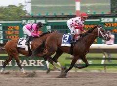 2019 Haskell Invitational: Maximum Security heads contenders in wide open race