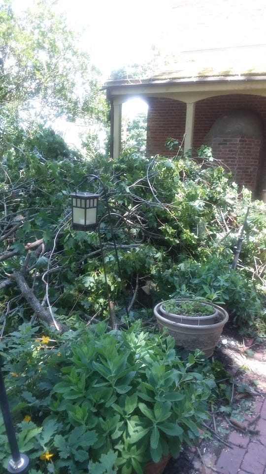 Salem experienced straight-line winds the night of Thursday, June 13, that sent a tree toppling onto Diane Wohlrab's home.
