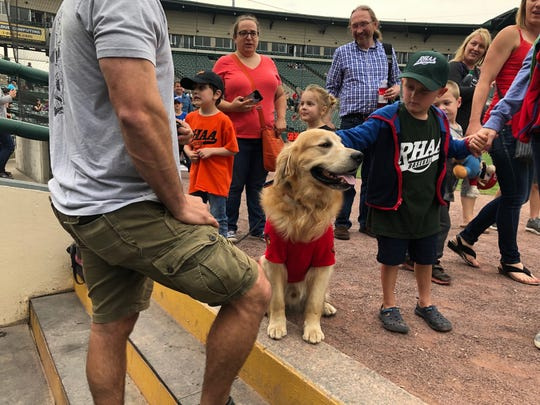 Milo the bat dog meets some fans June 1 at Frontier Field.